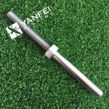 AISI316 roestvrij staal Swage Studes 5mm met Noot (INGEPAST JUIST)