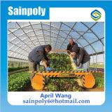農業のための低価格のフィルムの膨脹可能な温室
