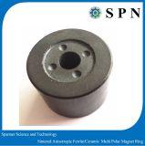 Gli anelli multipolari del magnete del ferrito permanente hanno personalizzato