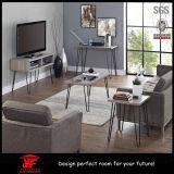 Moderne Wohnzimmer-Möbel hölzerne Fernsehapparat-Möbel Fernsehapparat-Standplatz-Abbildungen