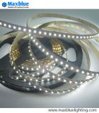 TUV Ce Listado 2-in-1 3528SMD chip Dual Strip LED blanco