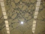 Caisse verte de Graniteopard de feuille de LeGreat pour l'iPad 2/3