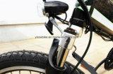 TUV En15194の証明および36V電圧Folding20inch電気バイク