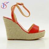 성 형식 Shoes Sandals 사회적으로 사업 Sv Wf 020를 위한 높은 뒤축을 댄 여자 숙녀