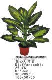 Plantas y flores artificiales de Diffenbachia 26lvs