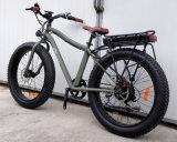 Gros vélo de la montagne E de pneu avec la crémaillère arrière