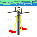 Openlucht Fitness Equipment voor Two Person op Sale (hd-12001)