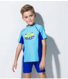 Swimwear &One-Части мокрой одежды детей Lycra материальный