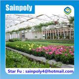 コマーシャルのための高品質の中国の製造者のガラス温室