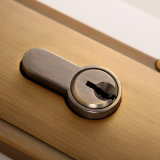 Style europeo Privacy Mortise Lockset con Lever Handle