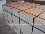madera contrachapada de 1220X2440m m Bintangor para el uso del embalaje