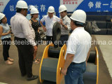 Pont roulant de QD de double de poutre passerelle employée couramment de bride de fixation 20/5 tonne avec le matériel de levage électrique d'élévateur