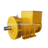 200kVA Brushless Alternator Used in Diesel Generator