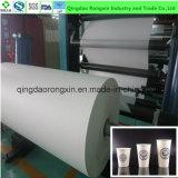 Tazas de papel del solo Semi-Producto revestido del PE