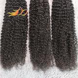 品質の証明の使用できる8Aねじれたカールのインドのバージンの人間の毛髪のよこ糸
