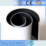 Geotêxtil Geomembrane composto de PP/PE