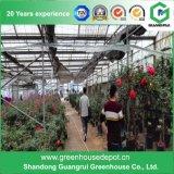 상업 - 농업 폴리탄산염 온실