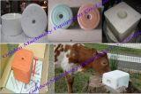 Les moutons de vache à cheval lèchent la machine alimentante de presse de bloc de sel de minerai