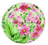 9インチの円形の環境に優しく使い捨て可能な紙皿
