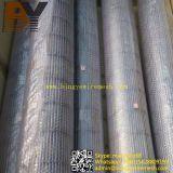Maglia decorativa architettonica del metallo della rete metallica dell'acciaio inossidabile
