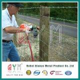 熱いすくい電流を通された編まれたワイヤーシカの農場の塀フィールド塀