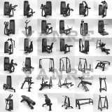 Becerro asentado equipo excelente de la gimnasia de Selectorized de la máquina del deporte de la gimnasia