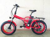 велосипед тучной автошины 350W электрический с тарельчатым тормозом (RSEB-507)