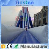 新しいデザイン大人および子供のための巨大で膨脹可能な水スライド