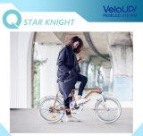 Batterie détachable de bicyclette électrique en aluminium de bicyclette de pouvoir vert d'E-Vélo