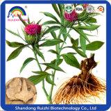 Organisches Atractylodes Lancea schneidet Baizhu Pflanzenauszug