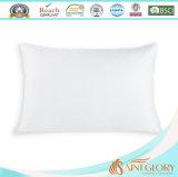 Гусына гостиницы вниз Pillow с чисто крышкой хлопко-бумажная ткани 233tc