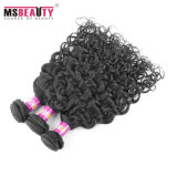 Cabelo humano Curly do Virgin brasileiro do preço de fábrica