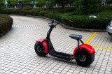 Scooter 2016 électrique de vente chaud du scooter 800W Citycoco de Jinyi (JY-ES005)