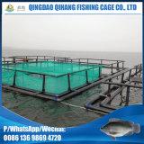 Gaiola quadrada da piscicultura que flutua no lago sea do rio