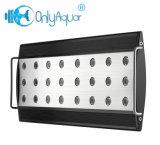 luz del acuario de 3watt LED los 46cm 72W LED para el filón coralino
