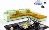 Il sofà moderno di svago del tessuto ha impostato con l'angolo (UL-NS455)
