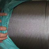 La fábrica suministra la cuerda de alambre de acero inoxidable 304 6X19+FC/Iwrc