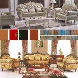 Классицистическая кожаный софа для живущий мебели комнаты установила (D929L)