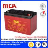 A bateria profunda do ciclo 12V testou pelo indicador de nível de Eletrólito com Ce RoHS do ISO