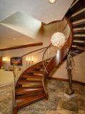 Arc en verre/escalier incurvé avec la semelle en verre de pêche à la traîne en verre pour la décoration à la maison