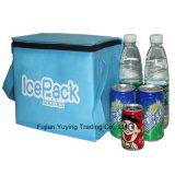 Sacchetto del dispositivo di raffreddamento dell'organizzatore del sacchetto di Tote di picnic (YYCB033)