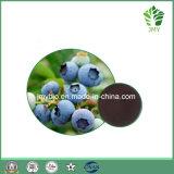 熱い販売の酸化防止剤のブルーベリーのエキスのアントシアニン5%~35%; アントシアニジン5%~35%; Pterostilbene 1%-20%