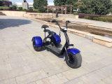 二重シートが付いている1000W 3車輪の電動機のスクーター