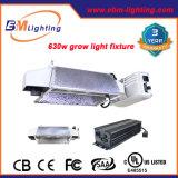 El lastre de baja frecuencia 630watt de CMH Digitaces crece el dispositivo ligero para la lámpara terminada doble de Philips