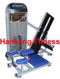 La forma fisica, la ginnastica e la strumentazione di ginnastica, costruzione di corpo, si abbassano indietro (HP-3031)