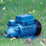 bomba de água elétrica do Vortex 0.5HP pequeno para a série limpa da Água-Kf