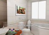 Venta al por mayor 22 ducha TV impermeable del LCD HD de la pulgada