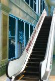 Эскалатор Volkslift хозяйственный напольный используемый в общественном месте