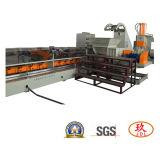 Singola linea di produzione del granulatore di Supervisore-Batch della vite di prezzi