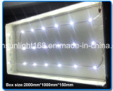 Beste Supply Made in China LED Module Manufacture 220V LED Light